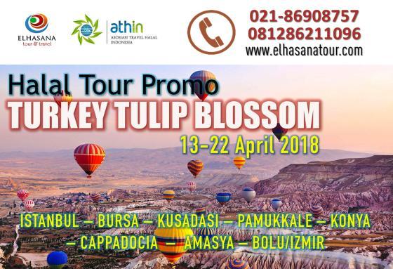 Turki Tulip Blossom