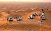 Desert Safari + Land Cruiser